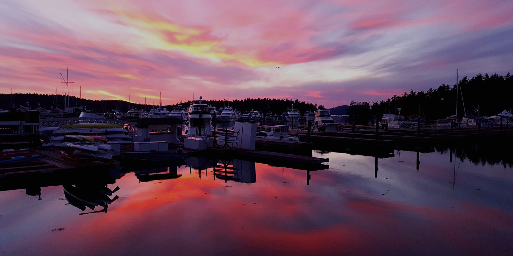 Friday Harbor marina at sunset